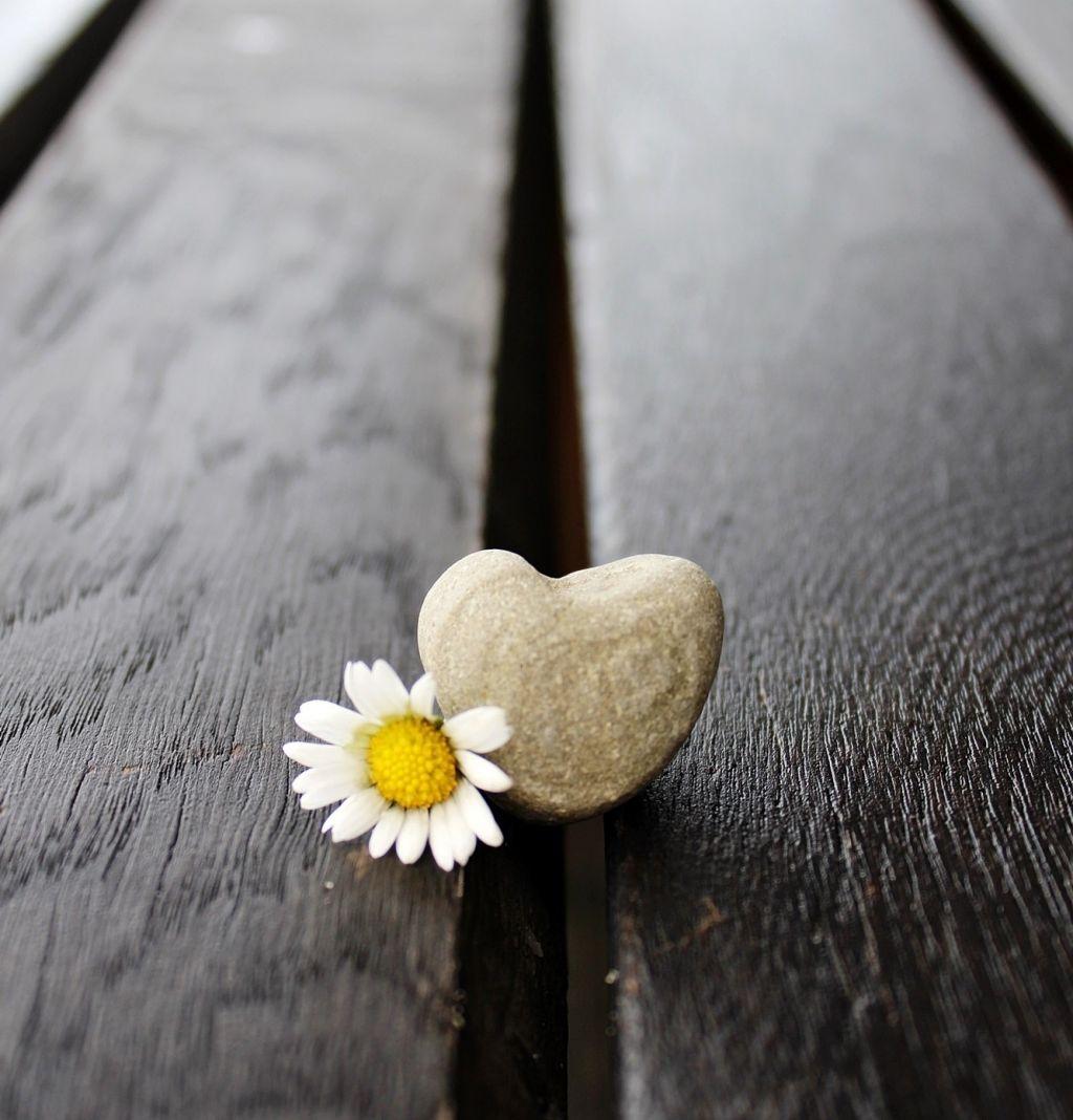 Ett hjärta och en blomma på en golvspringaa